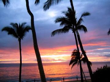 Sunset at Dolphins Point Maui - Beachfront - Hibiscus Suite at Dolphins Point Maui - Kihei - rentals