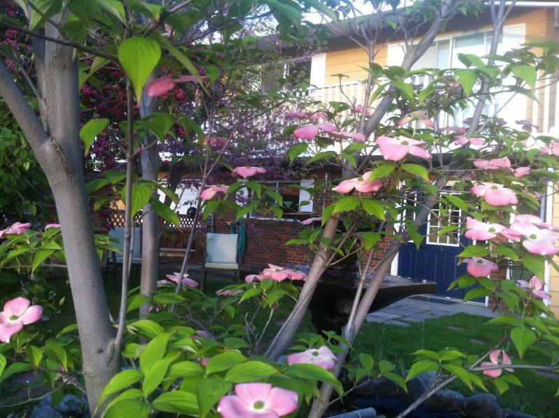 Gorgeous 2 bdrm Cherry Suite with 2 decks & yard. - Image 1 - Penticton - rentals