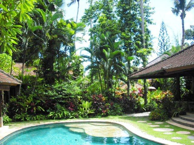 A view from the back of the pool towards the front of the property. - Sanggah Bali Old Style Retreat Garden Bungalows - Seminyak - rentals