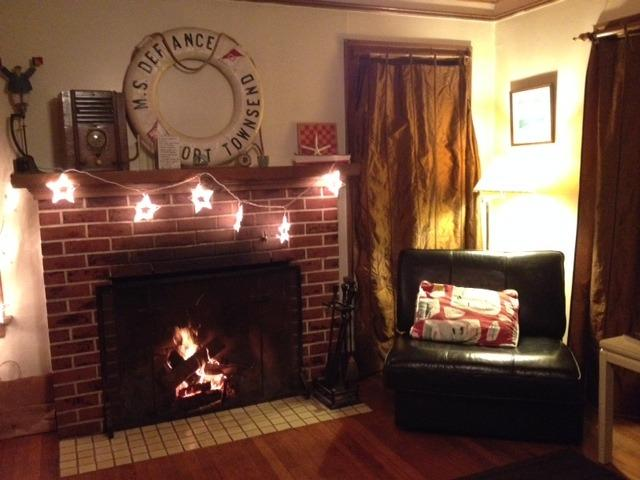 A relaxing evening next to the stars.  We build the fire, you light. - Boatbuilders Cottage - Private Waterfront hideaway - Port Townsend - rentals