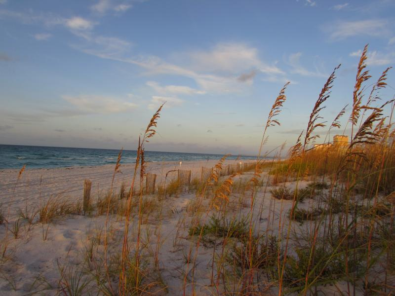 Cottage is located one block from the beach on the Gulf of Mexico. - Comfortable, airy cottage near beach, restaurants. - Pensacola Beach - rentals
