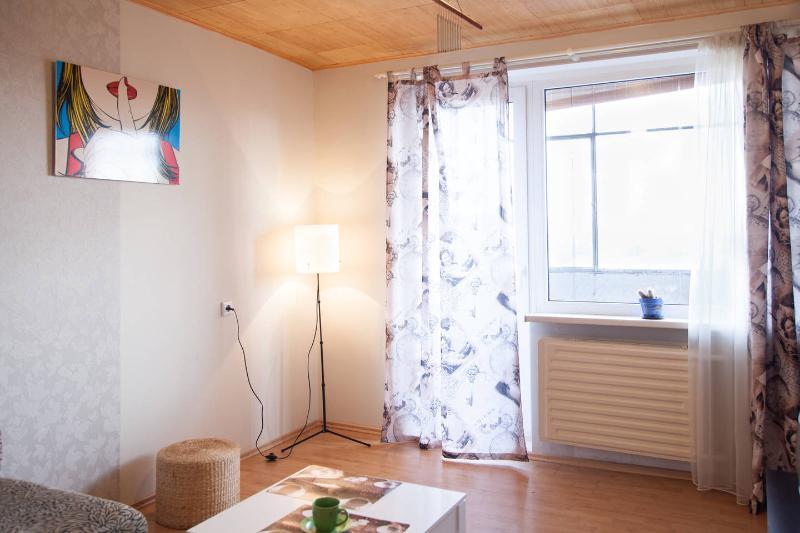 Stylish flat - Image 1 - Kaunas - rentals