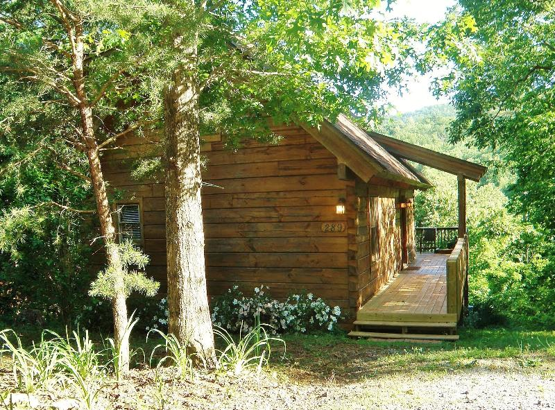 Cute Little Log Cabin For Rent.  Excellent Views. - Image 1 - Lake Lure - rentals