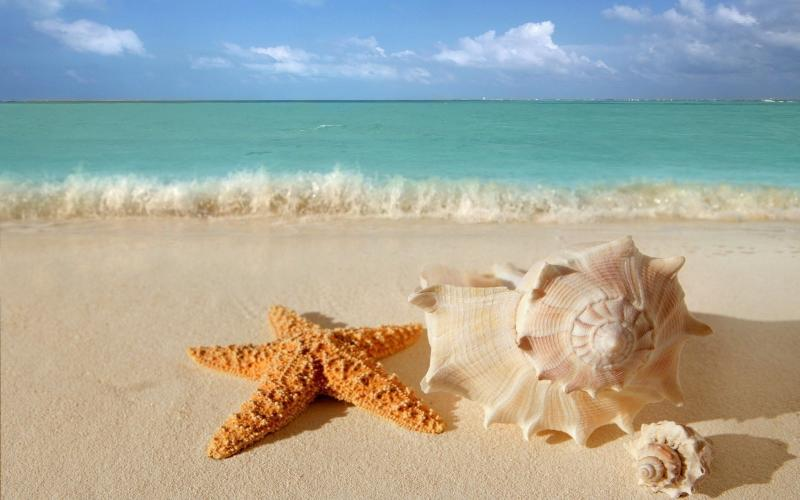 Beauty in Paradise - Image 1 - Cancun - rentals