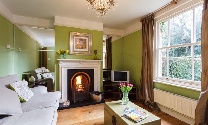 Lounge with coal fire - Twin Cottage Boutique Child Friendly Self Catering New Forest National Park - Burley - rentals