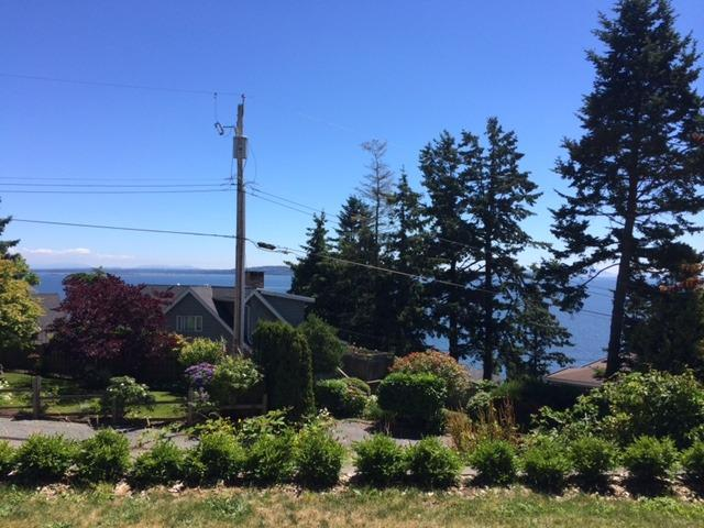 Ocean view from the suite - Ocean view, spacious and private one bedroom suite - White Rock - rentals