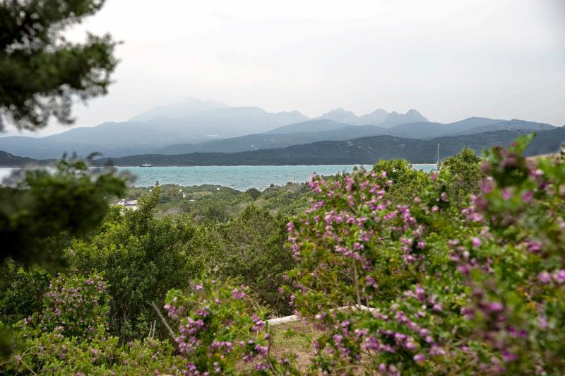 Capriccioli Fillirea - Image 1 - Arzachena - rentals