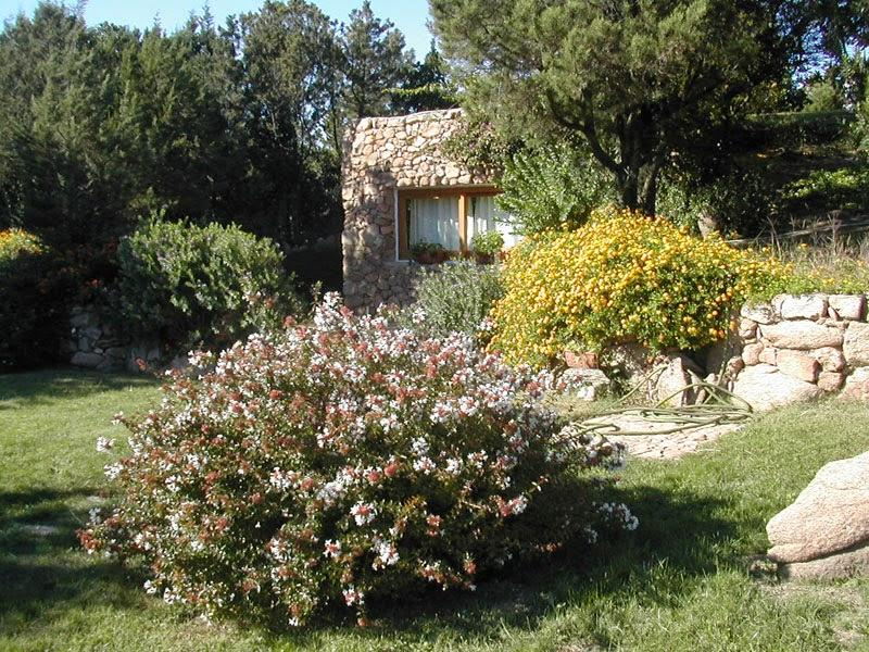 Capriccioli Erica - Image 1 - Arzachena - rentals