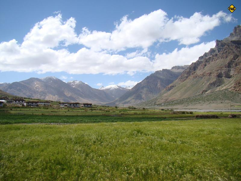 View from the Cottage - The Nomad's Cottage, Losar, Spiti Valley. - Lahaul and Spiti District - rentals