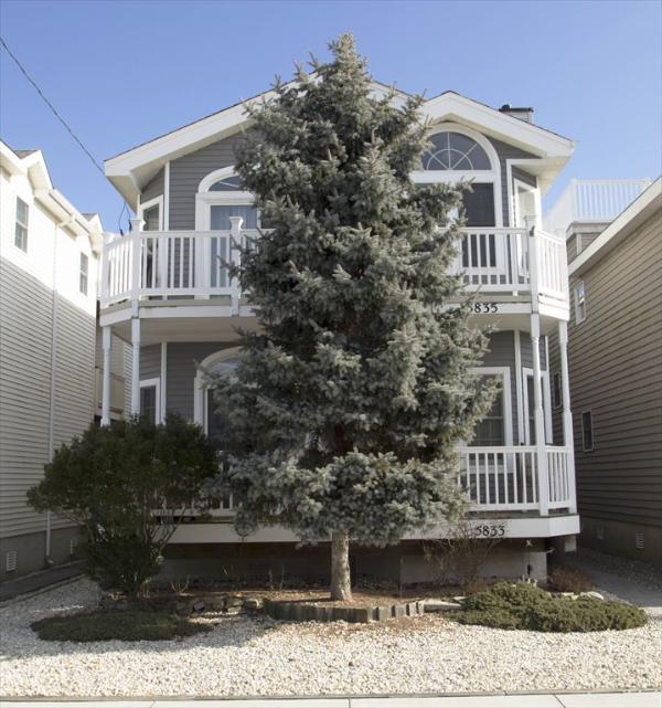 Asbury 1st 125020 - Image 1 - Ocean City - rentals
