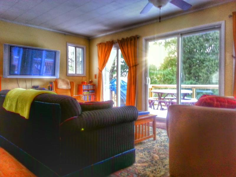 Enjoy our 50-inch, high def flat-screen TV and WIFI; many dozens of DVDs, CDs, & games & lake view - Spring: Sunny, cold or wet, luxuriate at your warm, modern lakefront house! - Central Lake - rentals
