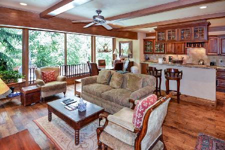 Downtown Luxury Condo Durant D2  with access to Pool, Hot Tub & Sauna - Image 1 - Aspen - rentals