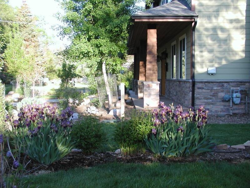 Mature Landscaping - Junction Creek ~ New 4 or 5 bedroom House Durango - Durango - rentals