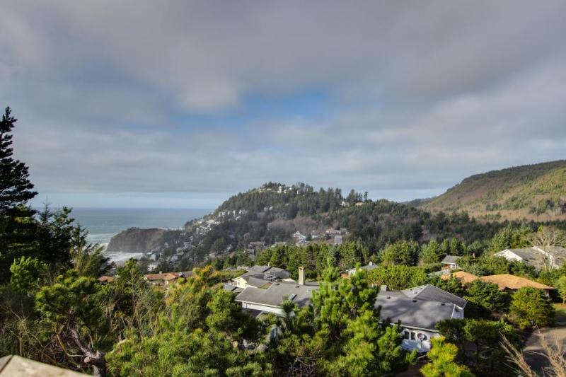 Spacious dog-friendly oceanside home w/private hot tub & views of the Pacific! - Image 1 - Oceanside - rentals