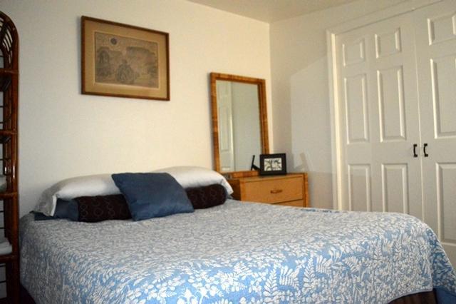 Queen bed - Comfy 1 bdrm/studio apartment-Close to North Shore - Hauula - rentals