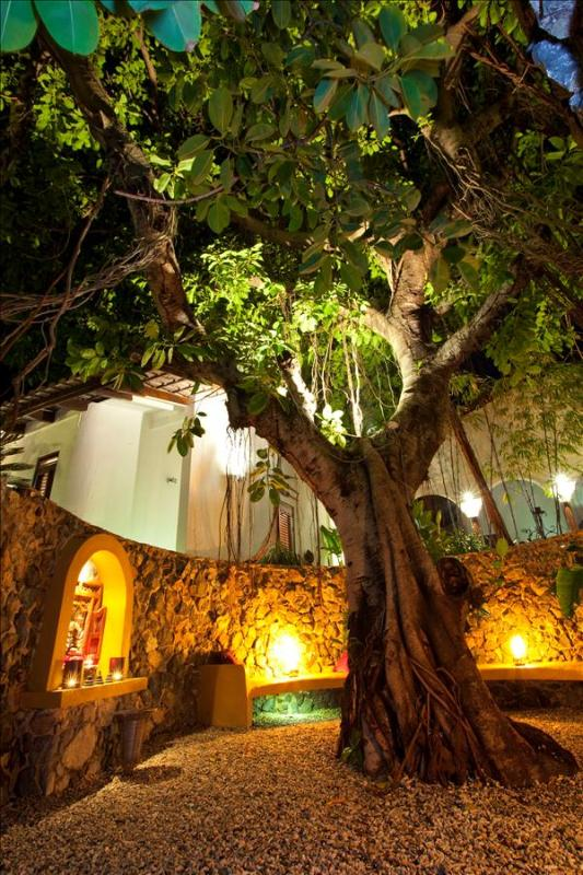 Baoase Luxury Resort Banyan Tree Room - Image 1 - Willemstad - rentals
