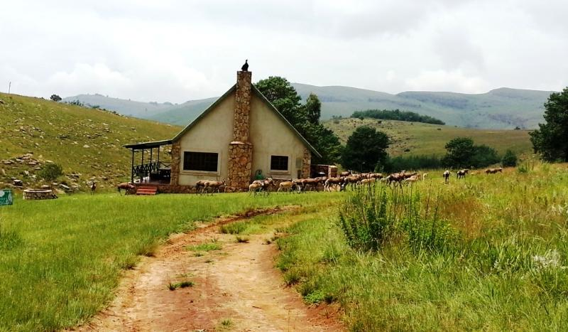Highland Giants Estate - Image 1 - Dullstroom - rentals