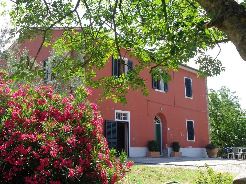 the house - La casa di Marcello - Vinci - rentals