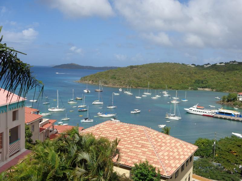 THIS COULD BE YOUR VIEW !!  AND 5 MINUTES TO DOWNTOWN!!! - WOW !!!! 5 MINUTE WALK TO TOWN- GREAT VIEW OF BAY - Cruz Bay - rentals