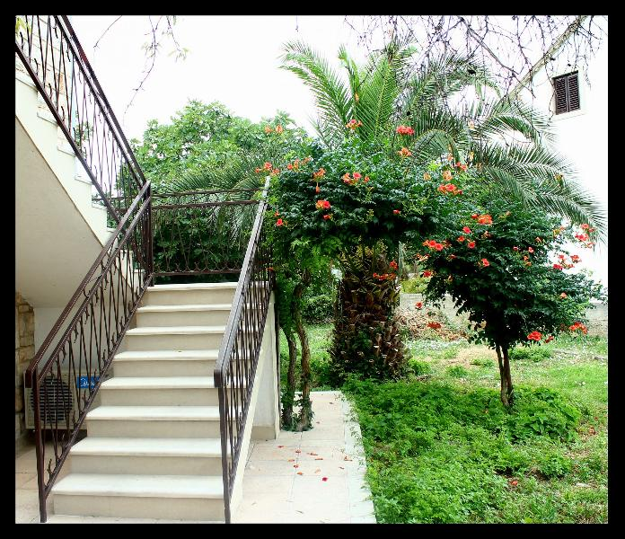 staircase (house and surroundings) - 8273  A4(4) - Supetar - Supetar - rentals
