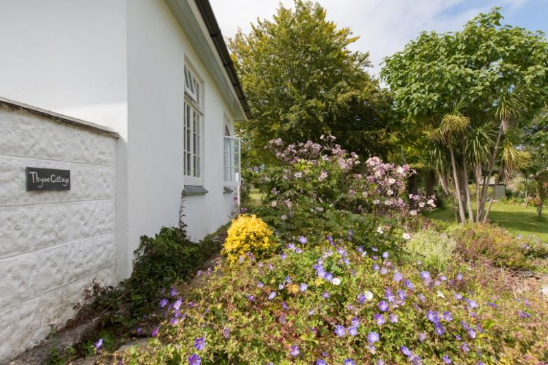 Thyme Cottage, St. Ives, Cornwall - Image 1 - Saint Ives - rentals