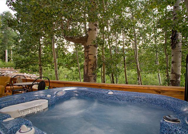 Hot Tub - Snow Crest - Affordable Pet-friendly 3 BR with Hot Tub in Alpine Meadows - Alpine Meadows - rentals