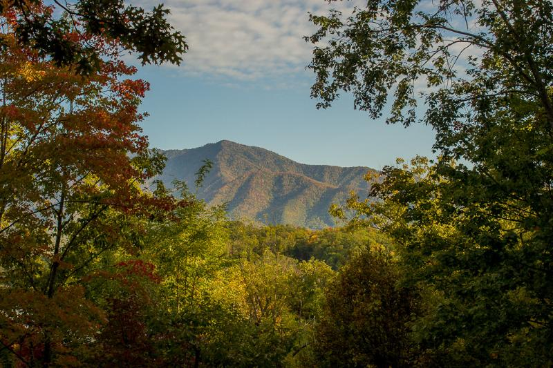 "Wonderful views - ""Halfway to Heaven"" Mountain View, 5 BR Cabin, Arcade, Pool Table, Pool Access - Gatlinburg - rentals"