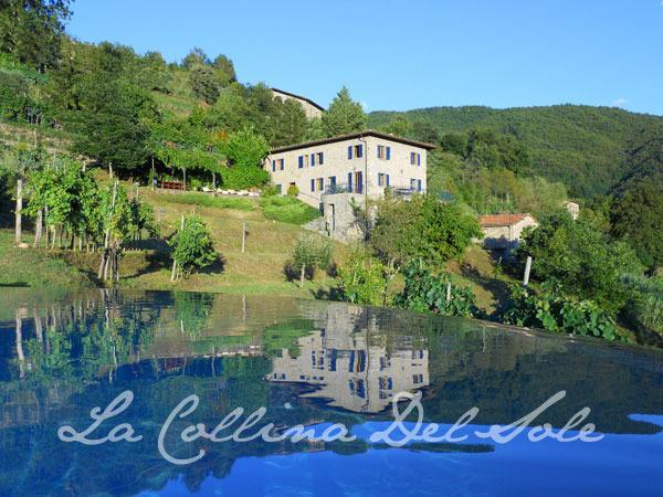 Tuscan villa and vineyard with award winning saltwater pool and Jacuzzi, - Villa and award winning salt water infinity pool - Fosciandora - rentals