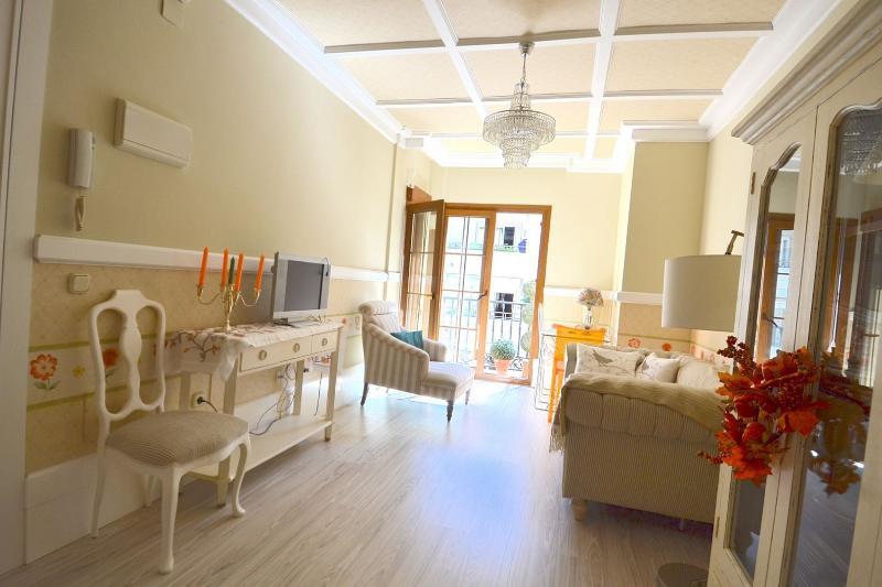 Fantastic apartment beach front - Image 1 - Marbella - rentals