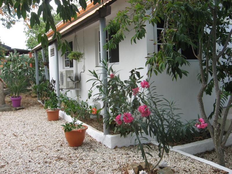 A spacious and quiet apartment - Beautiful spacious apartment in center of Aruba - Santa Cruz - rentals
