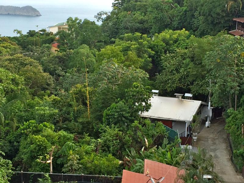 jungle, side of a mountain, close to beach,center of town, walking to everything, onsite services - NuRealU Nature & Culture Retreat Space rental - Manuel Antonio National Park - rentals