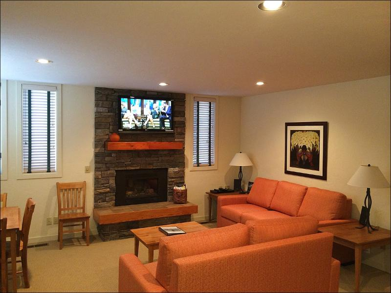 Living Room with Gas Fireplace - New 2009-10 Remodel  - Across from the New Base Village (2176) - Snowmass Village - rentals