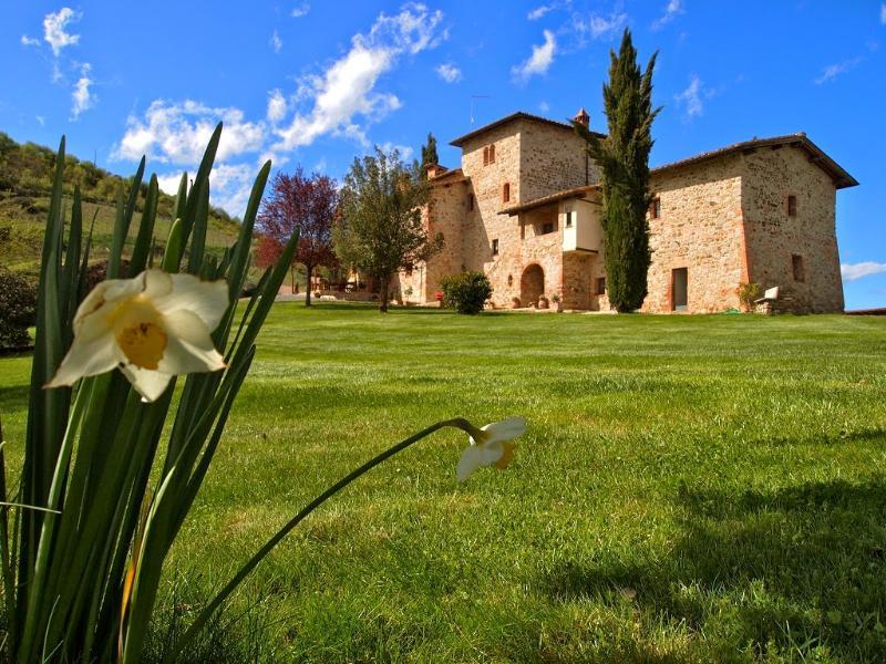 8 bedroom Villa in Castelnuovo Berardenga, Chianti, Tuscany, Italy : ref 2293959 - Image 1 - Pievasciata - rentals