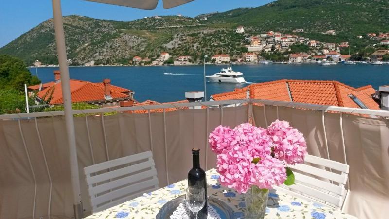 Apartments Boris - 51771-A1 - Image 1 - Dubrovnik - rentals