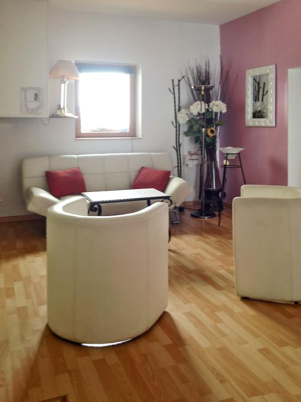 Fabulous flat in Nice with 4 bedrooms and furnished patio - Image 1 - Nice - rentals