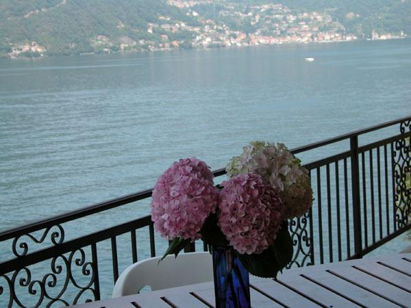 view from the balcony - Villetta Rosina (Lakefront property) - Nesso - rentals