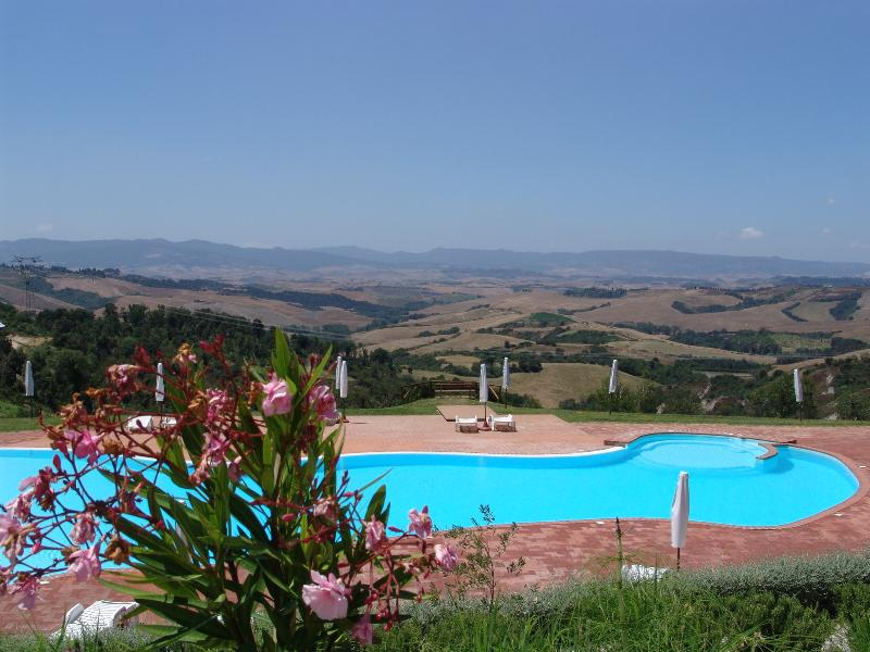 Panoramic swimming pool - Outstanding Hilltop View 2 Bedroom in Countryside - Montaione - rentals