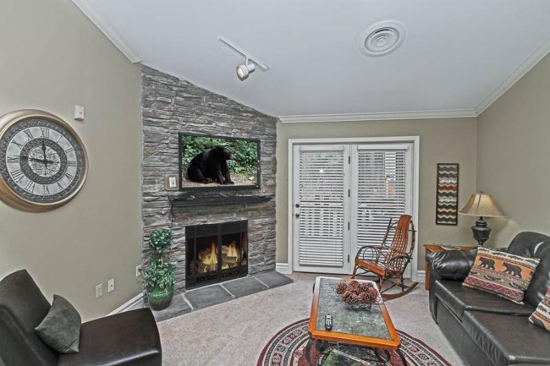 Baskins Creek 511 - Image 1 - Gatlinburg - rentals