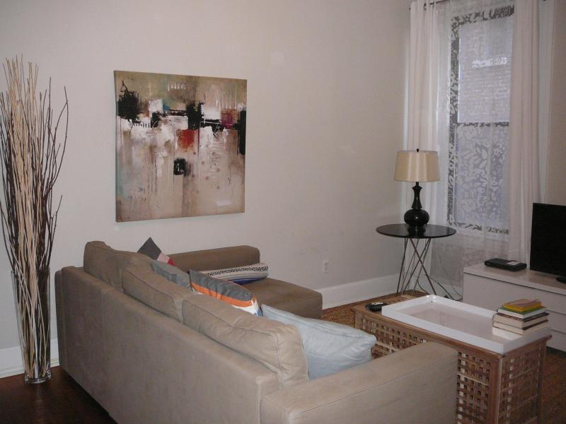 Beautiful two bedroom for family vacation - Image 1 - Washington DC - rentals