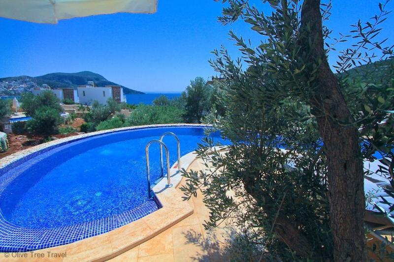 Likya View Villa - Phoebe - Image 1 - Kalkan - rentals