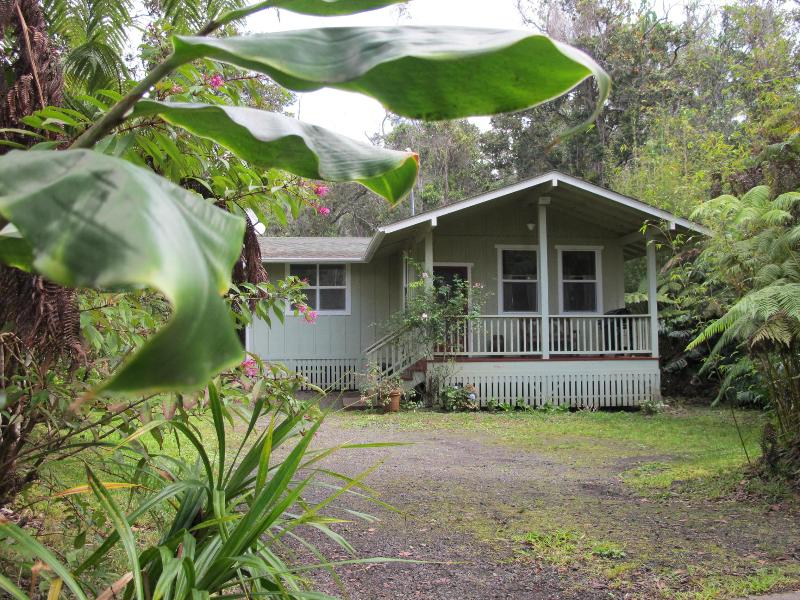 Carson's Mountain Cottage with hot tub - Image 1 - Kailua-Kona - rentals