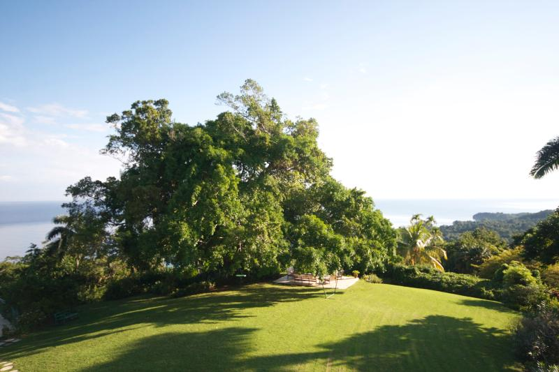 Norse Hill Estate ocean views in the soft light of early morning, from your bedroom balcony - Norse Hill Estate, 4 bd/bth, 5 staff, pool, 8acres - Port Antonio - rentals