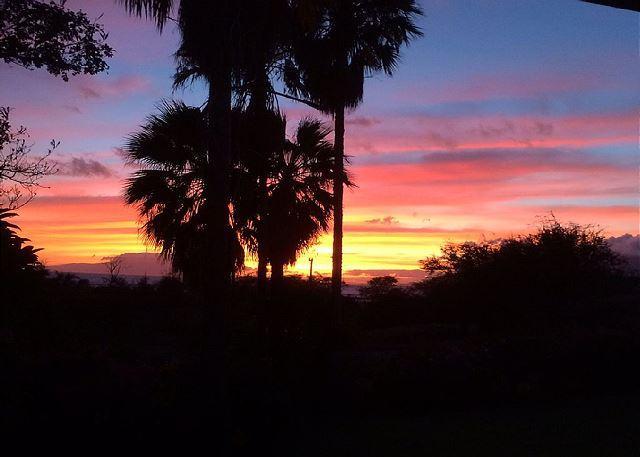Keawakapu Views #206 across from the best beach in Kihei! Great Rates 2B/1B - Image 1 - Kihei - rentals