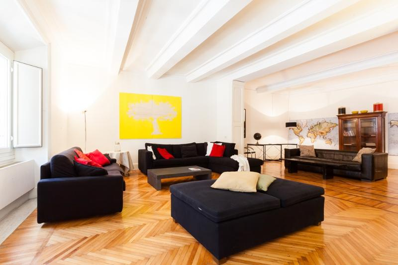living room - Anima - Rome - rentals