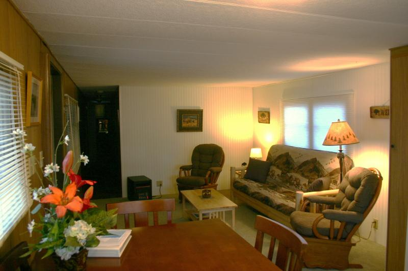 living room - Bison Home - mfg home for the value conscious! - West Yellowstone - rentals