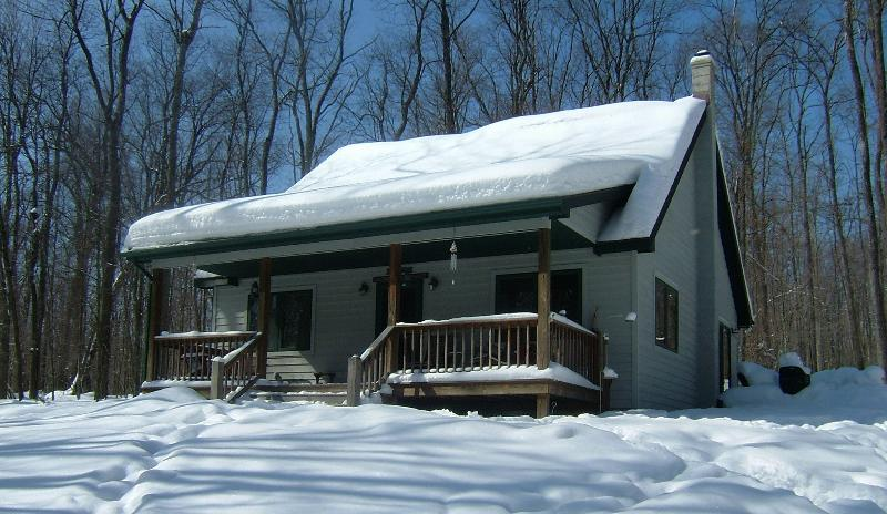 Blanketed in snow - Whispering Pines at Minnetoska - Oakland - rentals