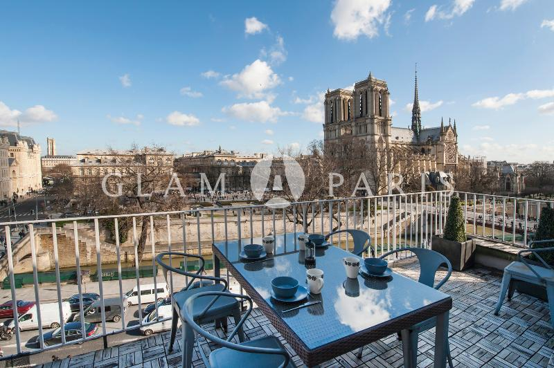 View on Notre Dame from the main terrace - Notre Dame view - LAST MINUTE OFFER - Paris - rentals
