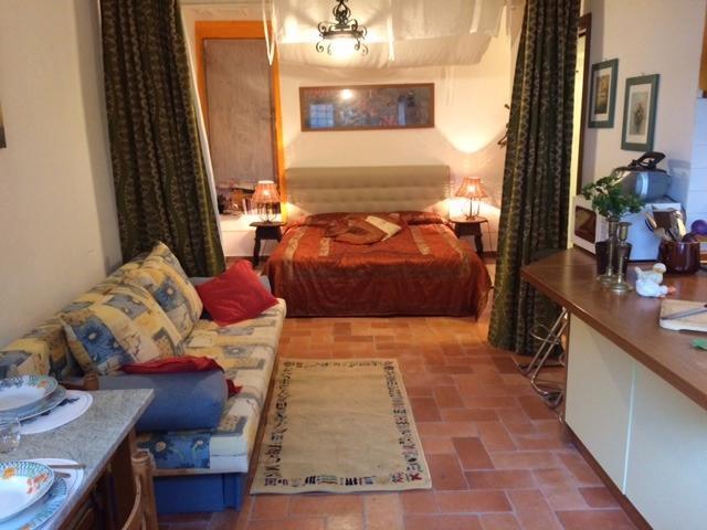 """studio """"Il Rifugio"""" - sleeping max. 3 (1 double, 1 single sofa bed) - Cosy 1BR/1 BA suite/ studio - Castellina In Chianti - rentals"""