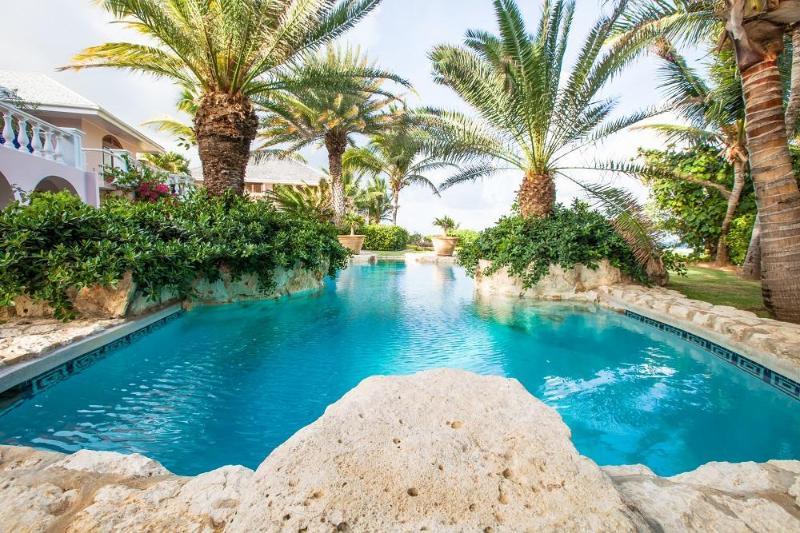 Luxury 10 bedroom Anguilla villa. Luxury! - Image 1 - Anguilla - rentals