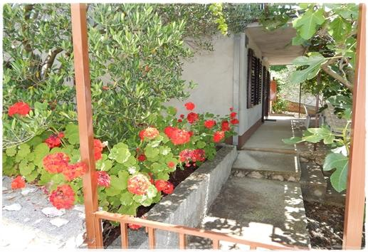 detail (house and surroundings) - 7996 A1 donji(3+2) - Okrug Donji - Okrug Donji - rentals